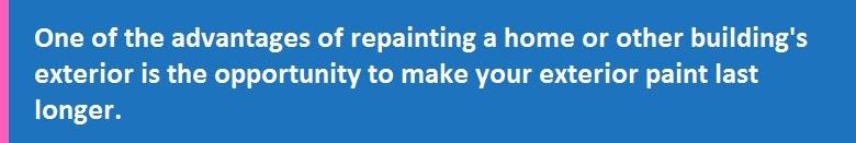 Paint Primers & Undercoats